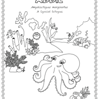 Addie-Activity-Final- 3